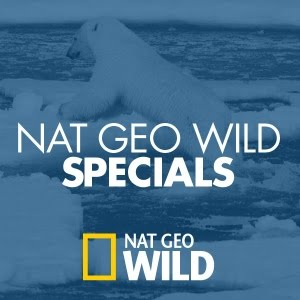Nat Geo Wild