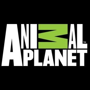 AnimalPlanetTV
