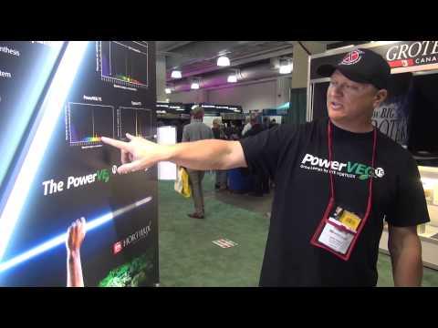 Introducing PowerVEG T5 Grow Lamps