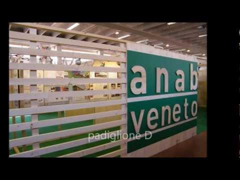 Mostra itinerante A.N.A.B. Architettura Naturale in Veneto_4 tappa Longarone