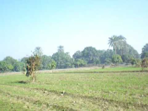 Habib Farmhouse 11Dec 2008