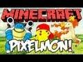 Minecraft: Pikachu, escolho-te a ti! - Pixelmon