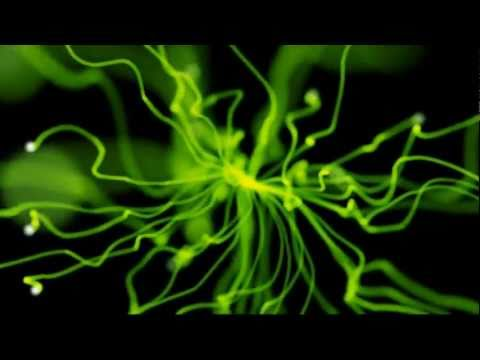 Psy Dubstep Mix 2011 (HD)