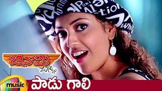Paadu Gaali Video Song | Binami Velakotlu