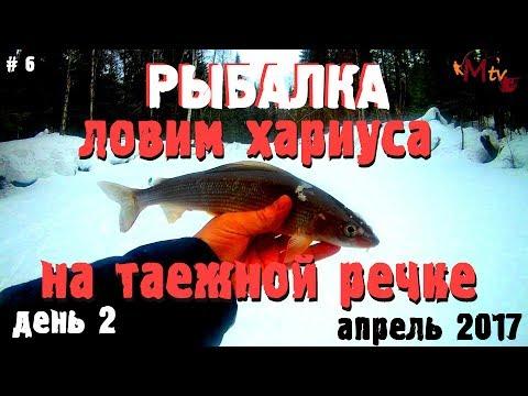 рыбалка на хариуса в апреле и мае