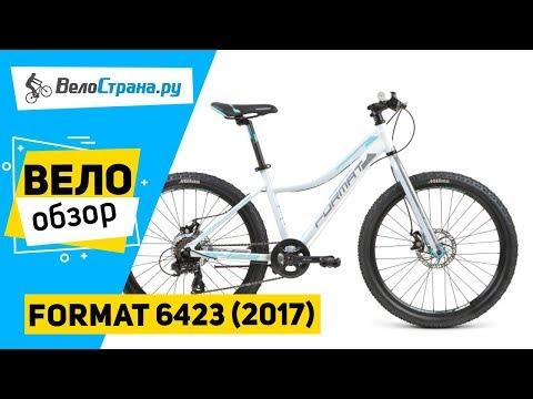 Format 6423 (2017)