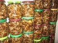 Как замариновать грибы опята, Бабушкин рецепт