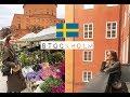 СТОКГОЛЬМ: учеба в Швеции, цены, что посмотреть VLOG