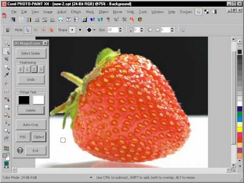 Magic Erase Macro for Corel Photo-PAINT