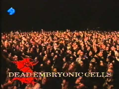 Sepultura Live Dr. Music Festival 1996