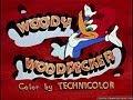 Дятел Вуди Вудпекер  /83 серия/ Ошибочная ракета