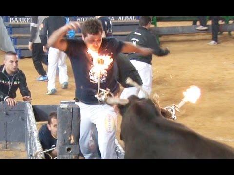 ESPECTACULO PASALO Y COMPARTELO TOROS FALLAS 14, Embolados, vacas, etc.