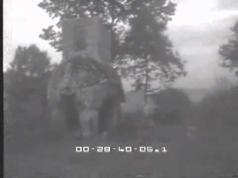 salvator dalì al parco dei mostri di bomarzo