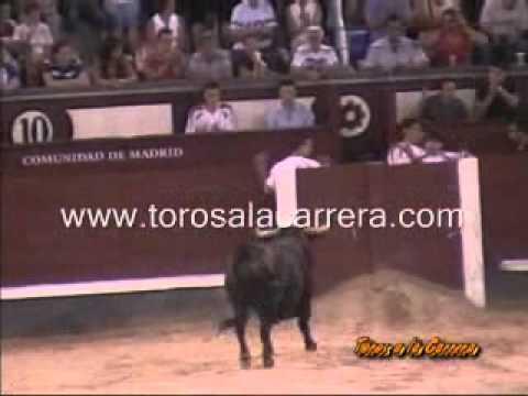 Final Concurso de Recortes Las Ventas 2005