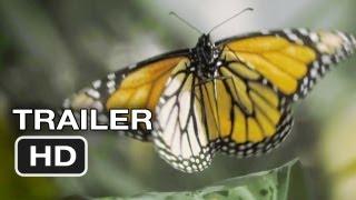 Flight of the Butterflies Official Trailer (2012) - IMAX 3D Movie HD