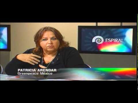 Video del Programa Espiral de Canal 11 sobre Deforestación parte3