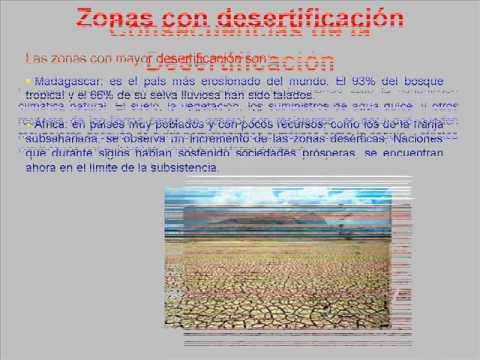 Desertificación y Deforestación