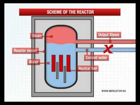 Fukushima I Nuclear Power Plant