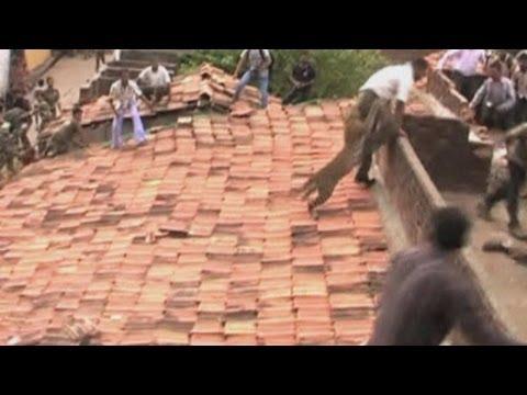 فيديو..لحظة هجوم نمر على قرية هندية