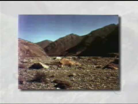 Novo Telecurso - E. Fundamental - Geografia - Aula 11 (1 de 2)