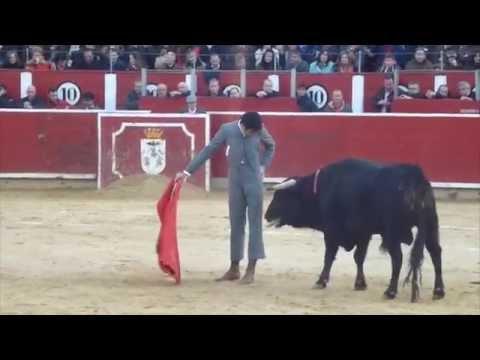 Festival Taurino Albacete 2015