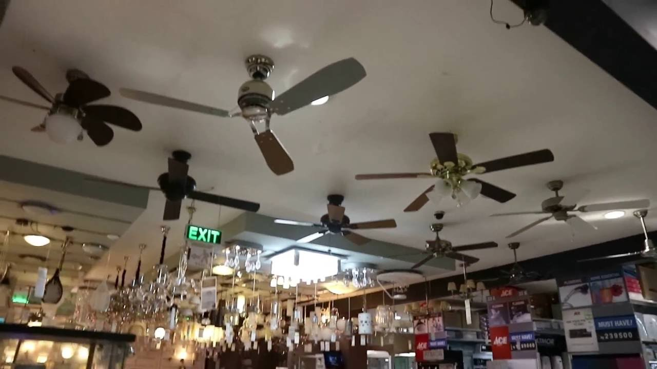 ceiling fans at ace hardware (2016 display) | racer.lt
