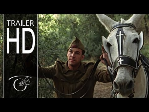 La mula - Trailer HD
