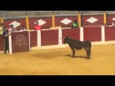 """Trayectoria """"manuel gomez"""" Ciudad Rodrigo (Salamanca)"""