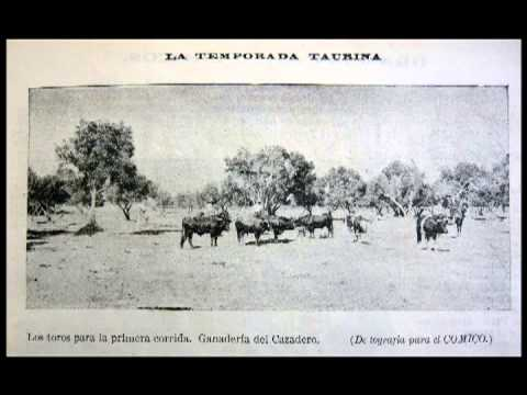Biblioteca Taurina