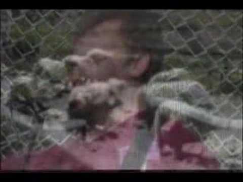 Nagasaki Hiroshima - David Rovics