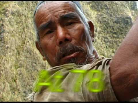 Wild Gold: Honey-Hunters of Nepal (Dir. Gore Gurung)
