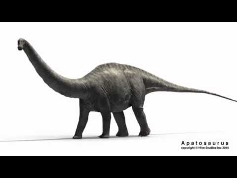 Apatosaurus walking (with sound)