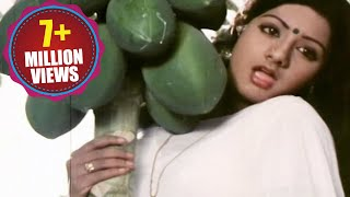 Sirimalle Puvva Video Song - Padaharella Vayasu