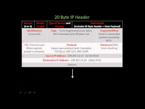 TCP/IP: TCP, UDP, IP, ICMP, ARP, The Four-layer DOD model and Seven-layer OSI model