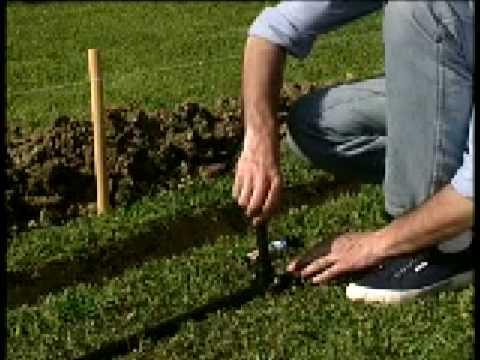 Giardinaggio: come realizzare un impianto di irrigazione