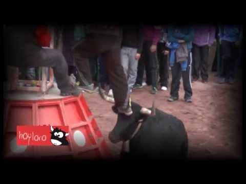 TOROS VIDEO CLIP DE MIGUEL OTTO