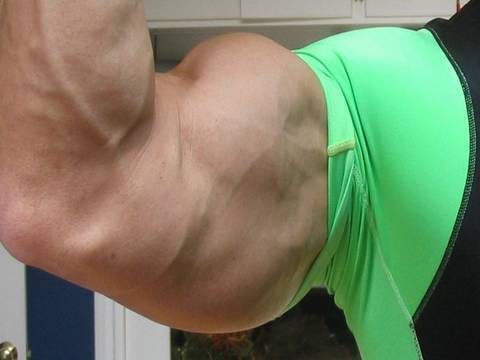 Huge Arms? Don-t forget triceps - Do dips!