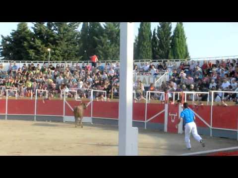 Concurso de recortadores Borja (Zaragoza) 17/09/2011- Asier Estarriaga y Javi Lopez. (1ª Ronda)