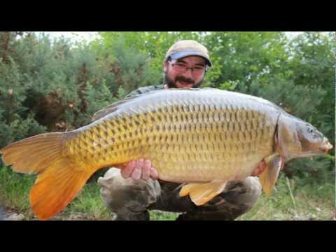 Carp Fishing Old Oaks Fisheries France 2011