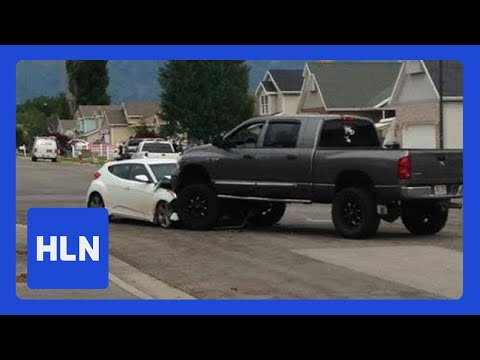 Hero driver ends high-speed chase through park