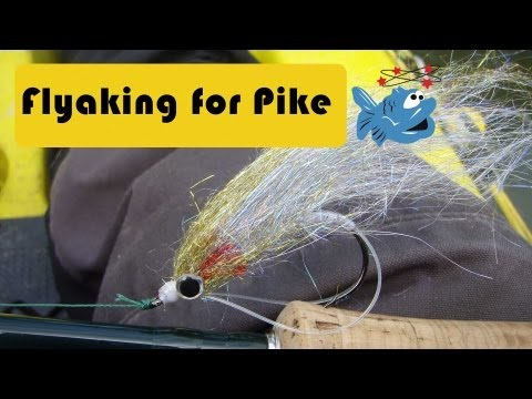 Kayak fishing for pike on the fly