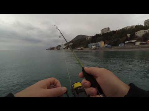 Рыбалка в крыму на море на спиннинг