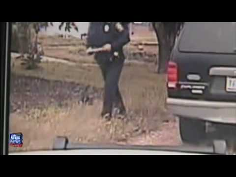 Cat VS Cop: Fight For Your Right! LOL