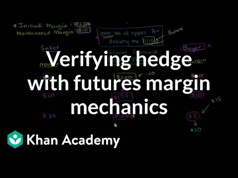 Verifying Hedge with Futures Margin Mechanics