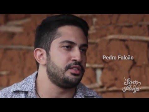 Teaser – Pedro Falcão