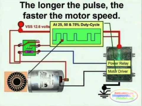 Electric Motor & Wiring Diagram