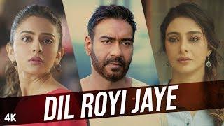 Dil Royi Jaye : De De Pyaar De