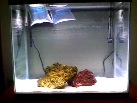 New 25G saltwater tank