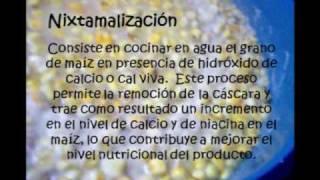 ELABORACION DE TORTILLAS DE MAIZ