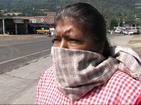 Mexicanos luchan por salvar sus bosques de los cárteles